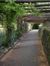 Ogrody zamkowe, Rothenburg