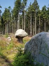 Na szlaku skalnych grzybów
