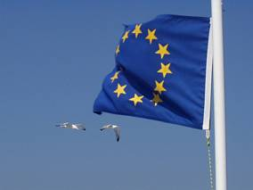 Mewy unijne :-)