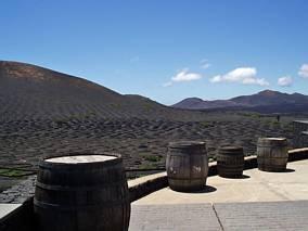 Obok winiarni na Lanzarote