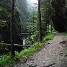 Dolina Juraniowa - cieśniawa