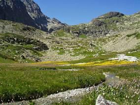 Dolina Wielicka - Kvetnica