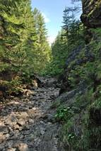 Dolina Prosiecka - suchy odcinek