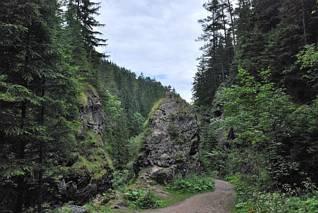 Dolina Borovianka