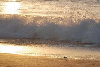 W obliczu potęgi morza...