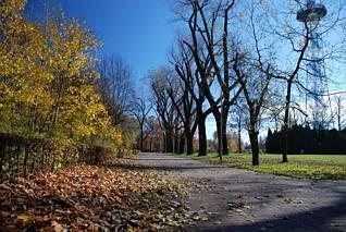 Park im. T. Kościuszki