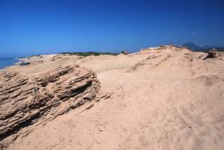 Mała pustynia