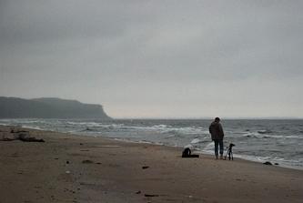 Plaża w okolicy Wisłki