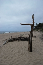 Dzieło wiatru i piasku